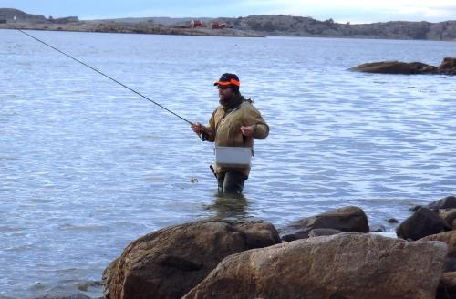 Min gode vän Kim jagar havets silver